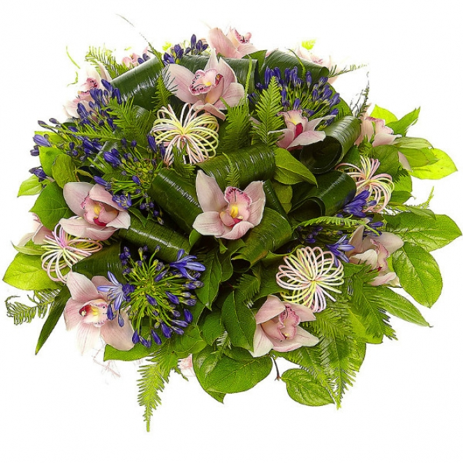 Букет цветов из розовой орхидеи, амбреллы, салала, аспидистры и синего агапантуса №21 с доставкой.