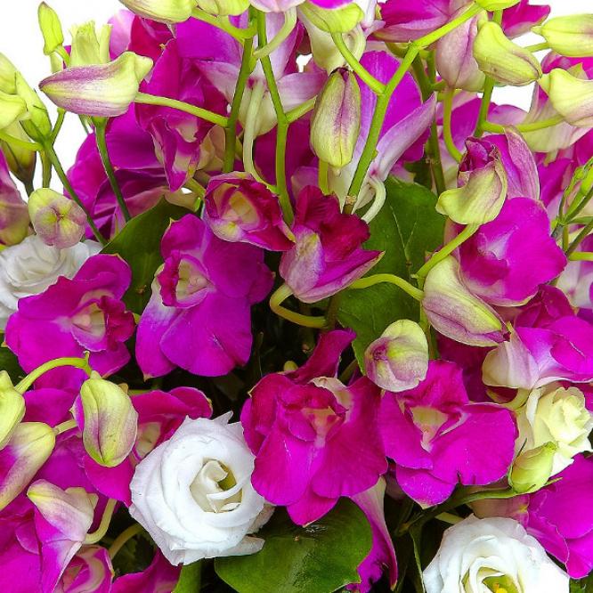 """Букет-корзина из розовой орхидеи """"Дендробиум"""", белого лизиантуса, папоротника и салала №62"""