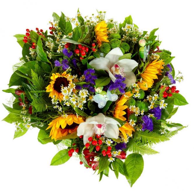 Букет цветов из темно-желтого подсолнуха, зеленой хризантемы, красной альстромерии и белой орхидеи №24 с доставкой.