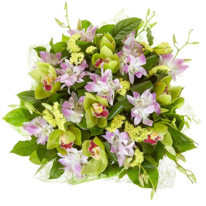 """Букет цветов из зеленой орхидеи, статицы, салала, аспидистр и розовой орхидеи """"Дендробиум"""" №27 с доставкой."""