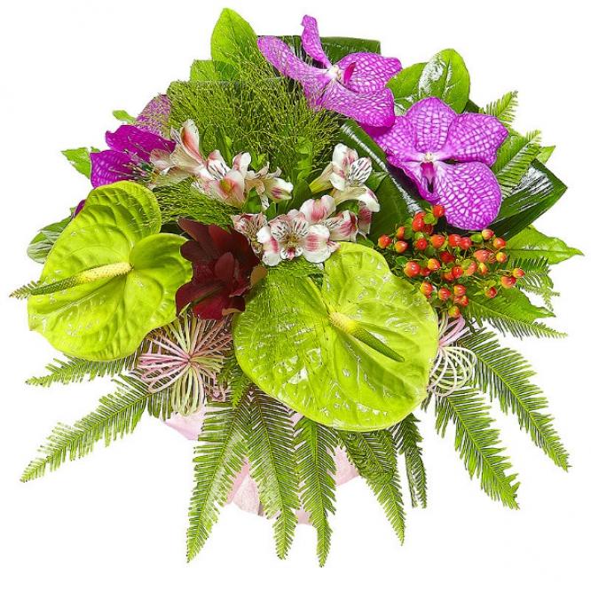 """Букет цветов из синей орхидеи """"Ванда"""", альстромерии, антуриума и красных леукодендрона и гиперикума №29 с доставкой."""