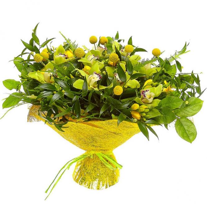 Букет цветов из зеленой орхидеи, желтой краспедии, рускуса, амбреллы, аспидистр и желтой фрезии №30 с доставкой.