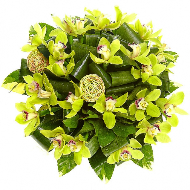 Букет цветов из зеленой орхидеи (25 шт.), аспидистр, салала и пестрой аралии №36 с доставкой.