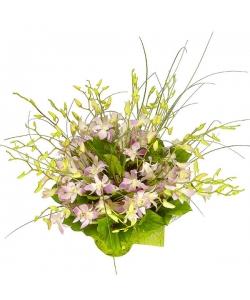 """Букет цветов из розовой орхидеи """"Дендробиум"""", амбреллы, салала и берграсса №40 с доставкой."""