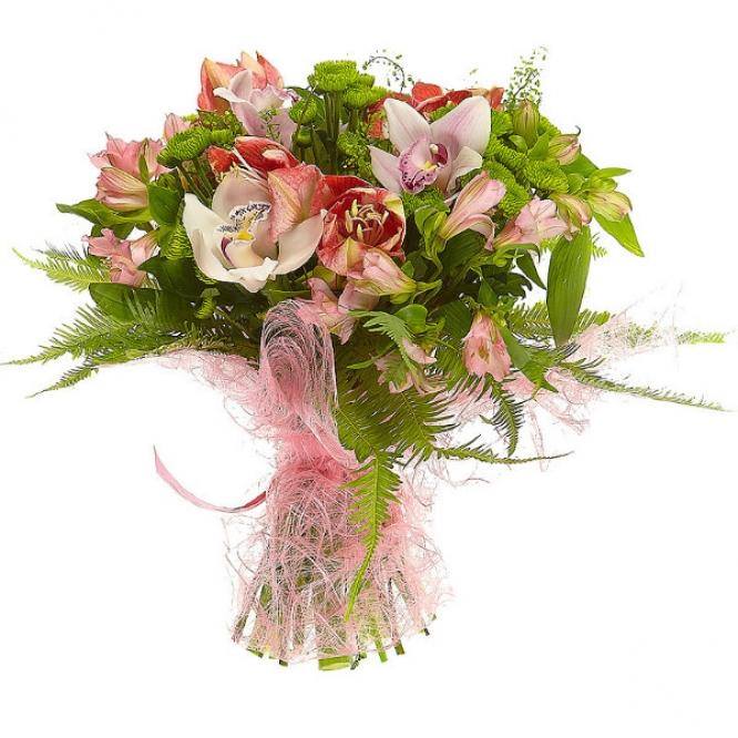 Букет цветов из розовой орхидеи, зеленой хризантемы, красно-белого амариллиса и розовой альстромерии №42 с доставкой.