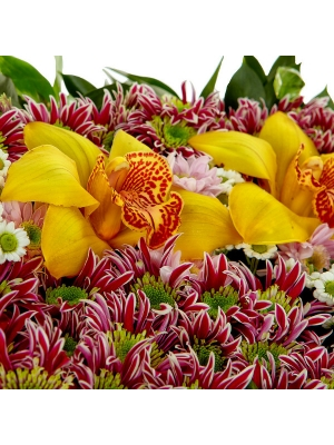 Букет-композиция из белой, розовой и полосатой хризантемы, гиперикума и желтых орхидеи и фрезии №69