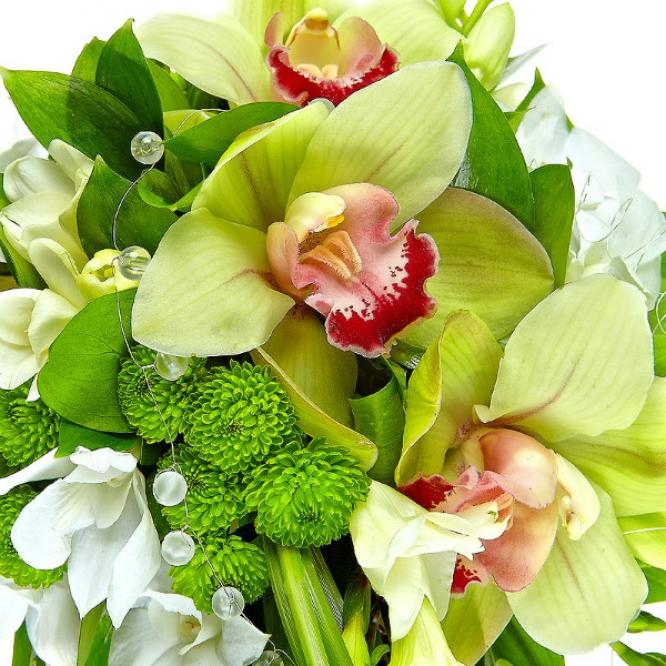Свадебный букет невесты из зеленой хризантемы, белой фрезии, рускуса, а также зеленой и белой орхидеи №47