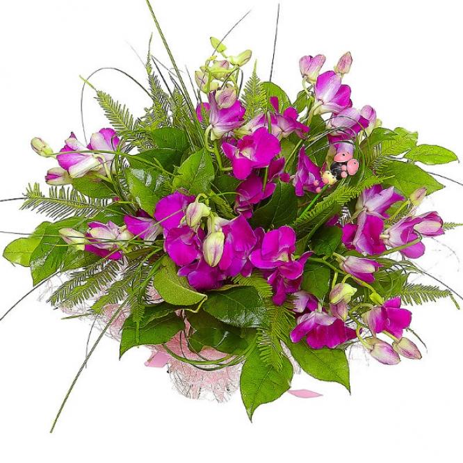 """Букет цветов из розовой орхидеи """"Дендробиум"""", амбреллы, салала и берграсса №4 с доставкой."""
