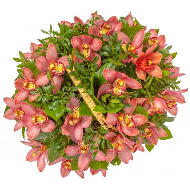 "Букет-корзина из розовой орхидеи ""Цимбидиум"", салала и лентиско №99"