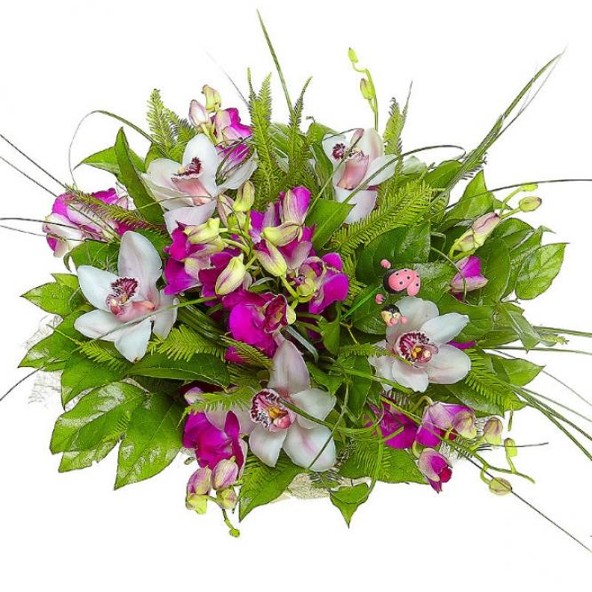 """Букет цветов из розовой орхидеи """"Дендробиум"""", амбреллы, салала, берграсса, а также белой орхидеи №5 с доставкой."""