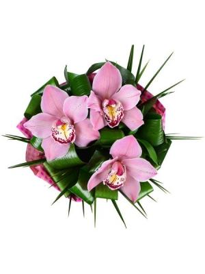 """Букет цветов из розовой орхидеи """"Цимбидиум"""" (3 цветка), аспидистры и берграсса с доставкой."""