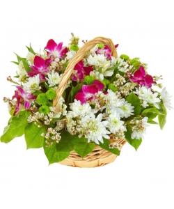 Букет-корзина из белой и зеленой хризантемы, розовой орхидеи и белой альстромерии №63