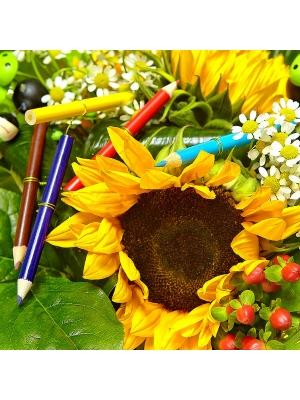 Букет цветов из темно-желтого подсолнуха, белого орнитогалума, ромашек и красного гиперикума №5 с доставкой.