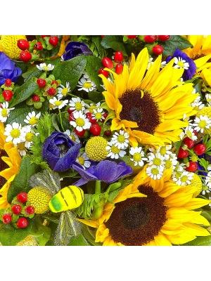 Букет цветов из темно-желтого подсолнуха, синего анемона, желтой краспедии, ромашек и гиперикума №6 с доставкой.