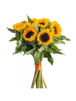 Букет цветов из оранжевых подсолнухов (11 штук, экстра класс)  и декоративной зелени с доставкой.