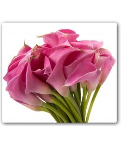Поштучно розовая калла с доставкой по Киеву.