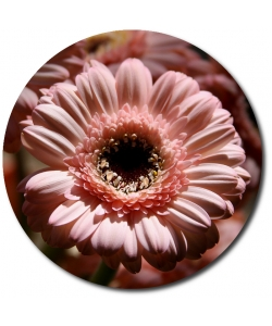 Поштучно нежно-розовая гербера с доставкой №9