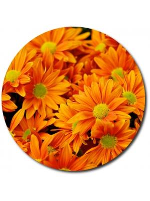 Поштучно ветка оранжевой хризантемы (экстра класс, 75 сантиметров) с доставкой №19