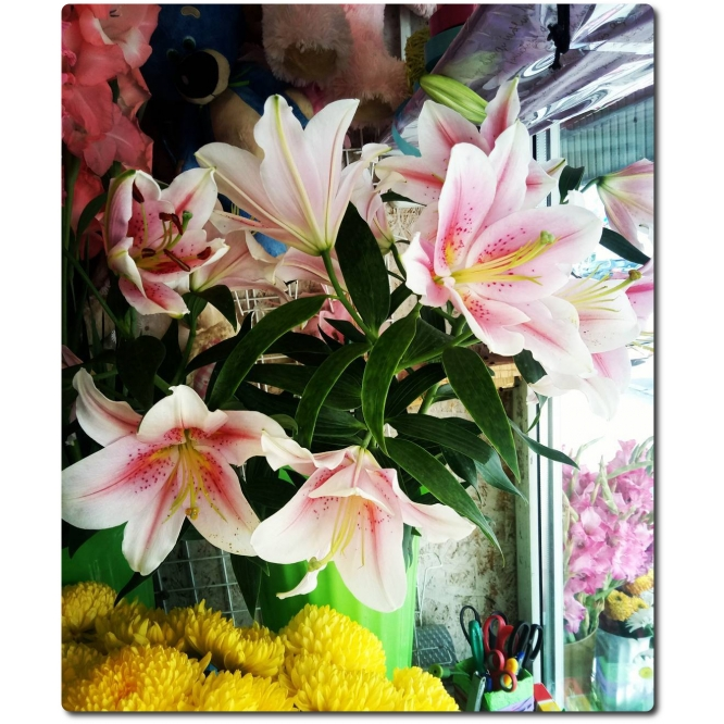 Купить цветы поштучно украина — 5
