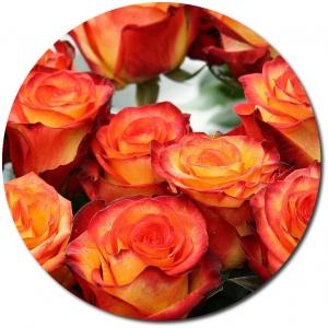 Поштучно оранжевая роза Баллада с доставкой.