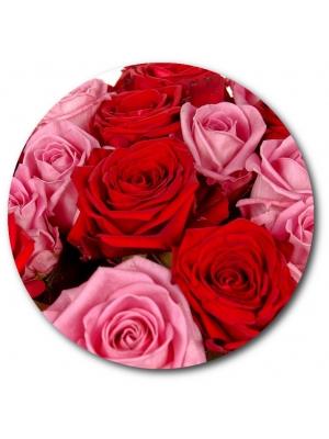 Поштучно розовая и красная роза (экстра класс, 70 сантиметров) с доставкой №8