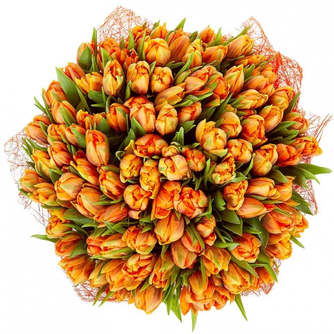Поштучно рыжие тюльпаны с доставкой по Киеву.