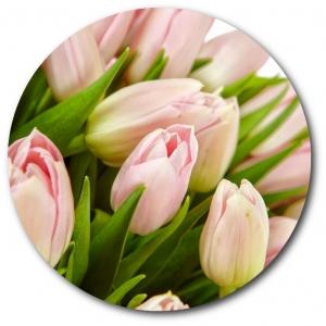 Поштучно розовые тюльпаны с доставкой №13