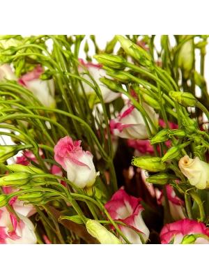 Букет цветов из бело-розового лизиантуса (эустома) (21 шт.) №14 с доставкой.