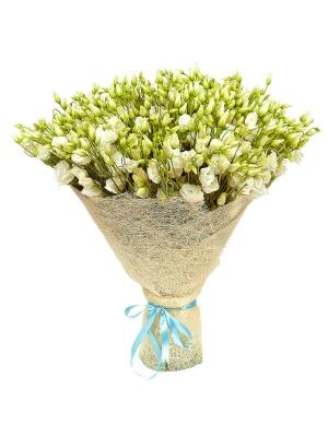 Букет цветов из белого лизиантуса (эустома) (101 шт.) №19 с доставкой.