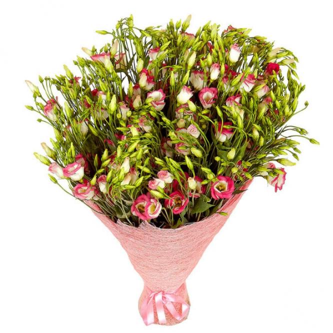 Букет цветов из бело-розового лизиантуса (эустома) (51 шт.) №23 с доставкой.