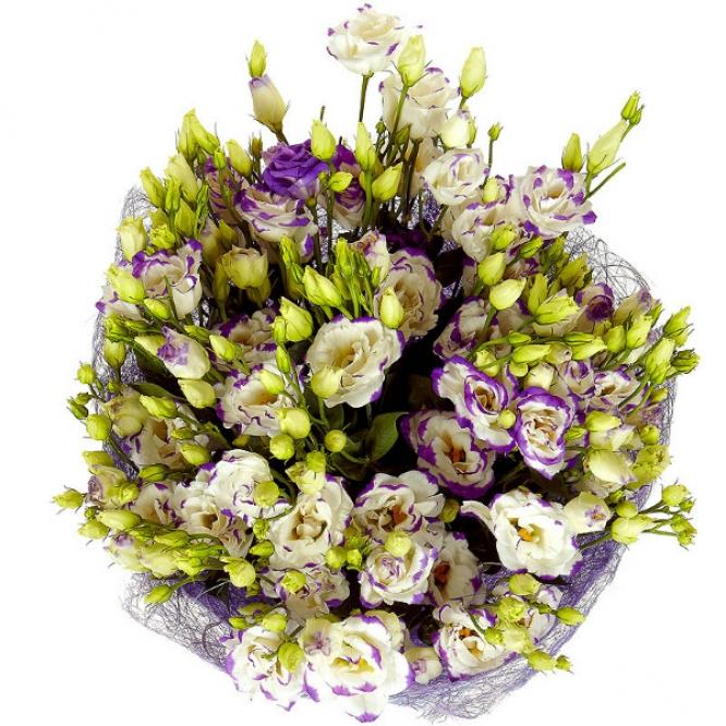 Букет цветов из бело-синего лизиантуса (эустома) (21 шт.) №7 с доставкой.
