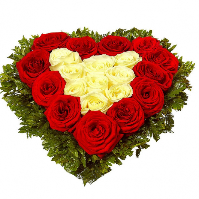 Букет-сердце из белых и красных роз (21 шт.), а также папоротника №84