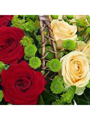 Букет-корзина из зеленой хризантемы, красных и кремовых роз, пестрой аралии, салала и папоротника №89