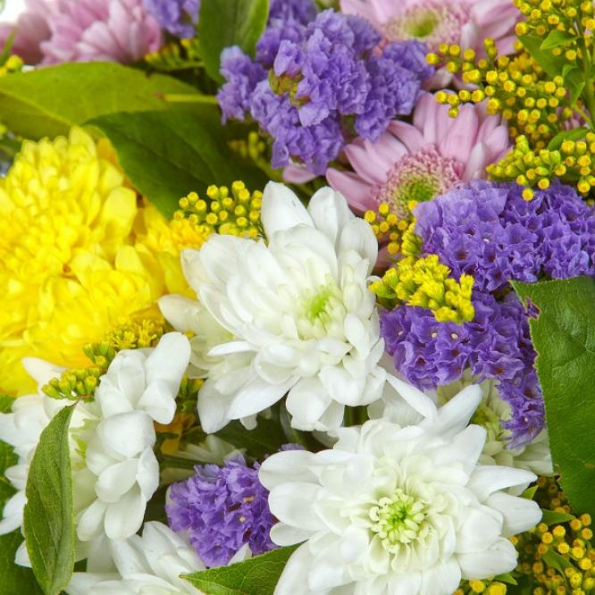 Букет цветов из белой, розовой и желтой хризантемы, салала, солидаго и статицы №42 с доставкой.