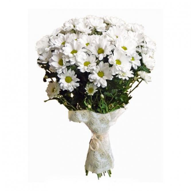 Букет цветов из белой кустовой хризантемы (7 шт.) №43 с доставкой.
