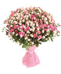 Букет цветов из розовых и нежнорозовых кустовых роз №1 (101 шт.) с доставкой.
