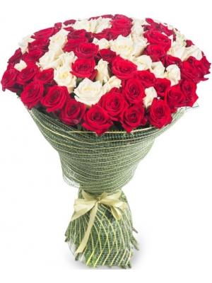 Букет цветов из красных и белых роз №7 (101 шт.) с доставкой.
