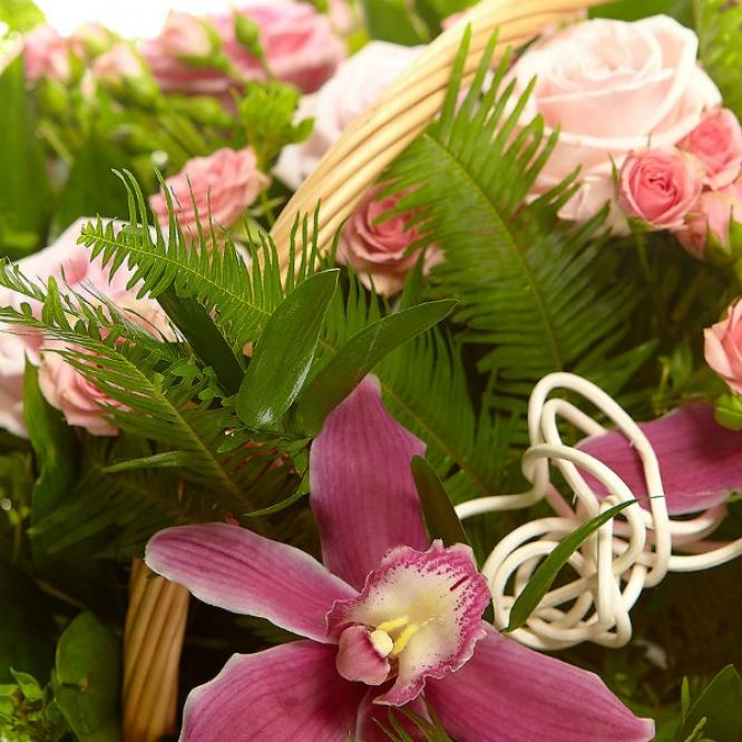 Букет-корзина из розовых роз, орхидеи и папоротника №19