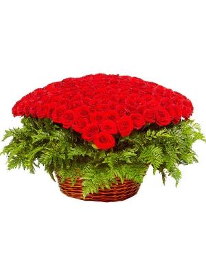 Букет-корзина из красных роз (301 шт.) и папоротника №23