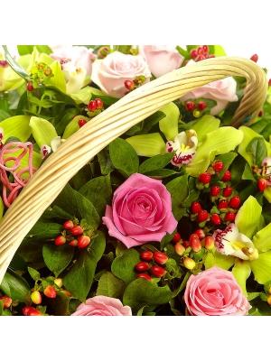Букет-корзина из розовых роз, зеленой орхидеи и красного гиперикума №23