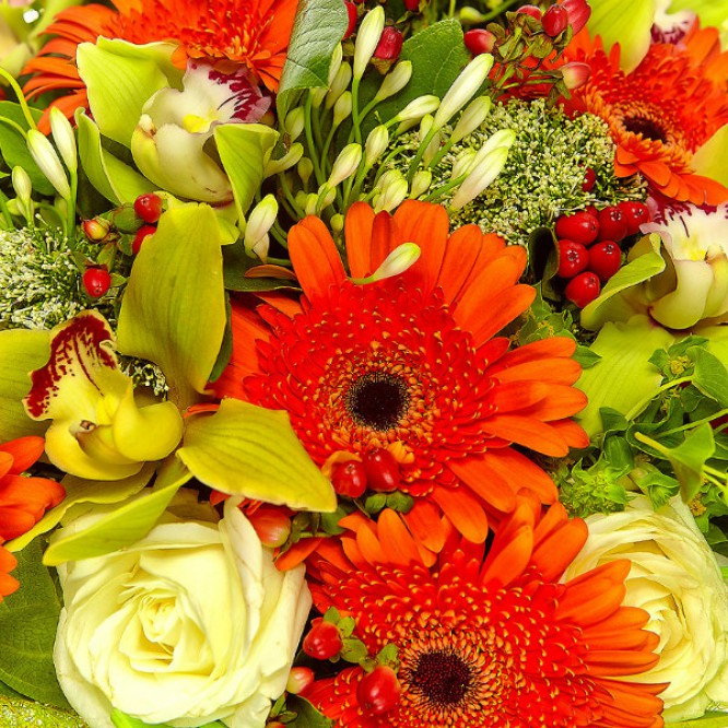 Букет цветов из белых роз, рыжей герберы, зеленой орхидеи и красного гиперикума №54 с доставкой.