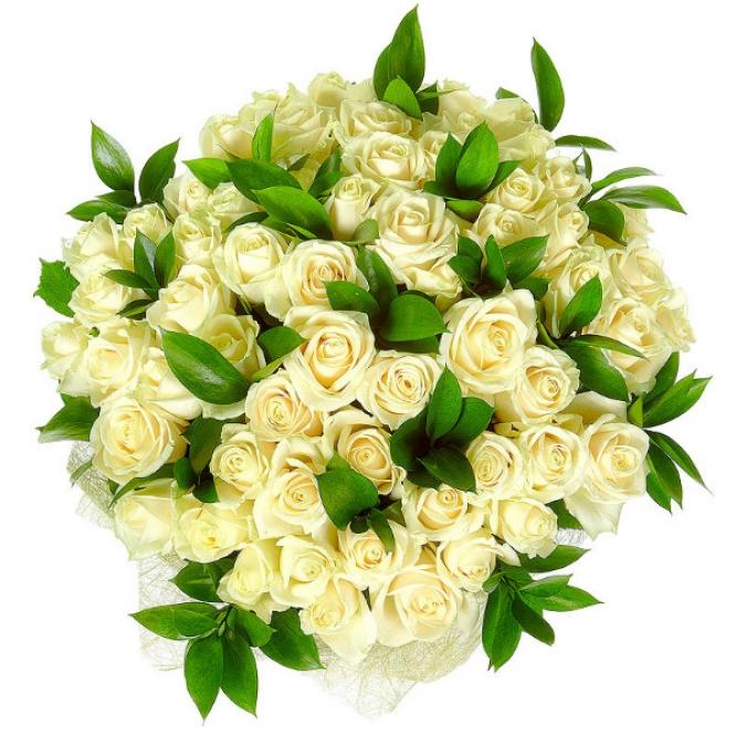 Букет цветов из белых роз №12 (51 шт.) с доставкой.