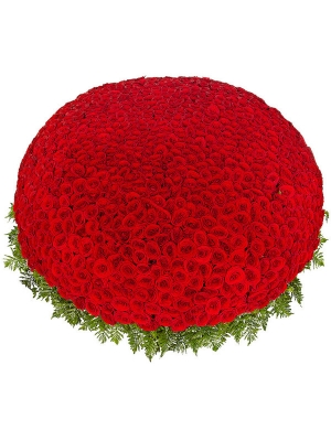 Букет-корзина из красных роз (1001 шт.) и папоротника №37