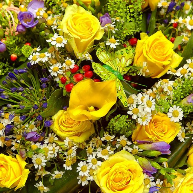 Букет цветов из голубой фрезии, желтых роз, ромашек, красного гиперикума и желтых калл №90 с доставкой.