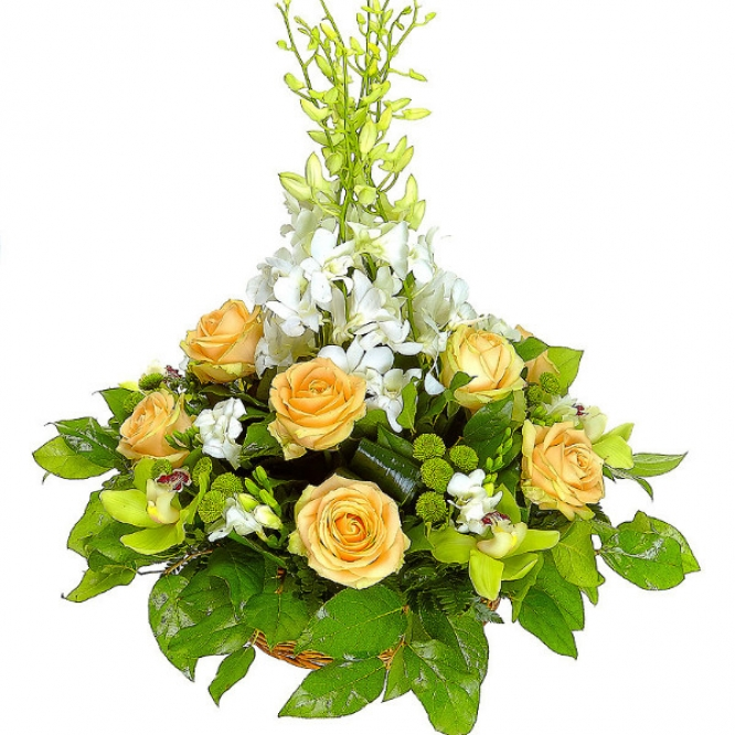 """Букет-корзина из зеленой хризантемы, кремовых роз, зеленой орхидеи и орхидеи """"Дендробиум"""" №42"""