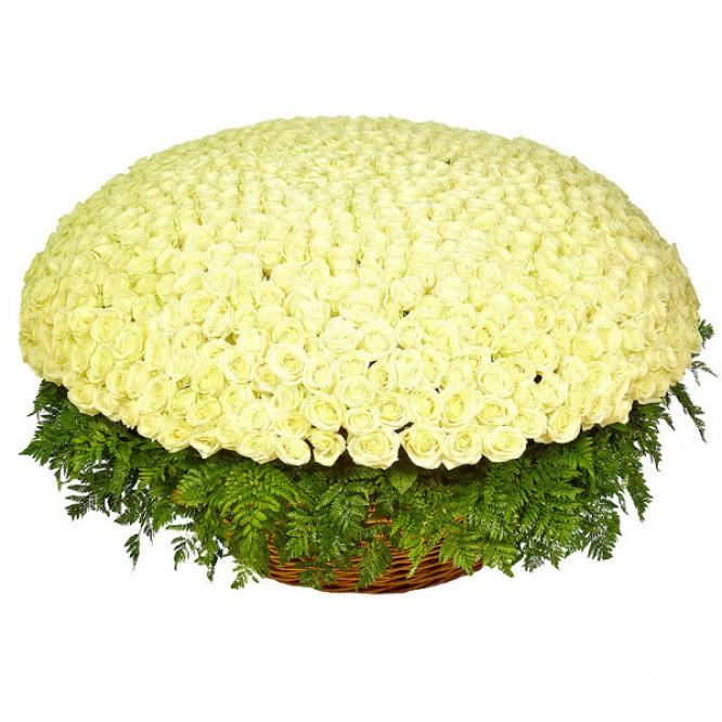 Букет-корзина из белых роз (1001 шт.) и папоротника №43