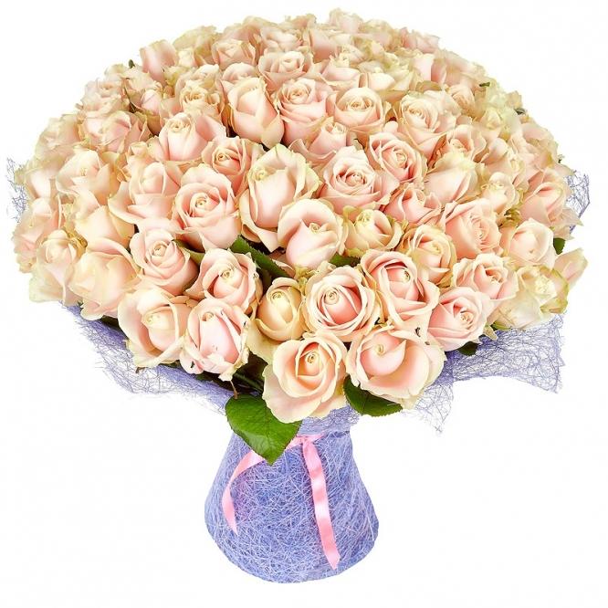 Букет цветов из кремовых роз (101 шт.) №43 с доставкой.