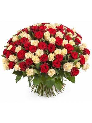 Букет цветов из кремовых и красных роз (101 шт.) №107 с доставкой.