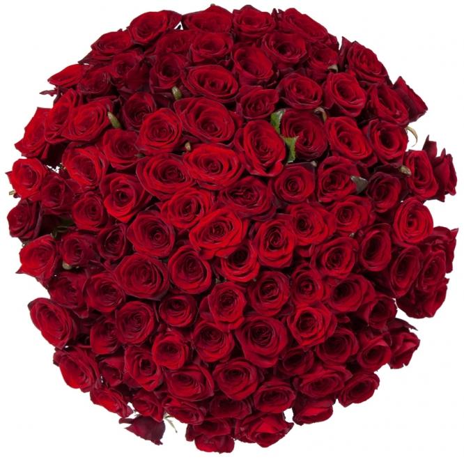 Букет цветов из красных роз (51 шт.) №108 с доставкой.