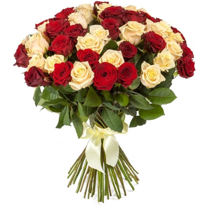 Букет цветов из красных и кремовых роз (51 шт.) №109 с доставкой.